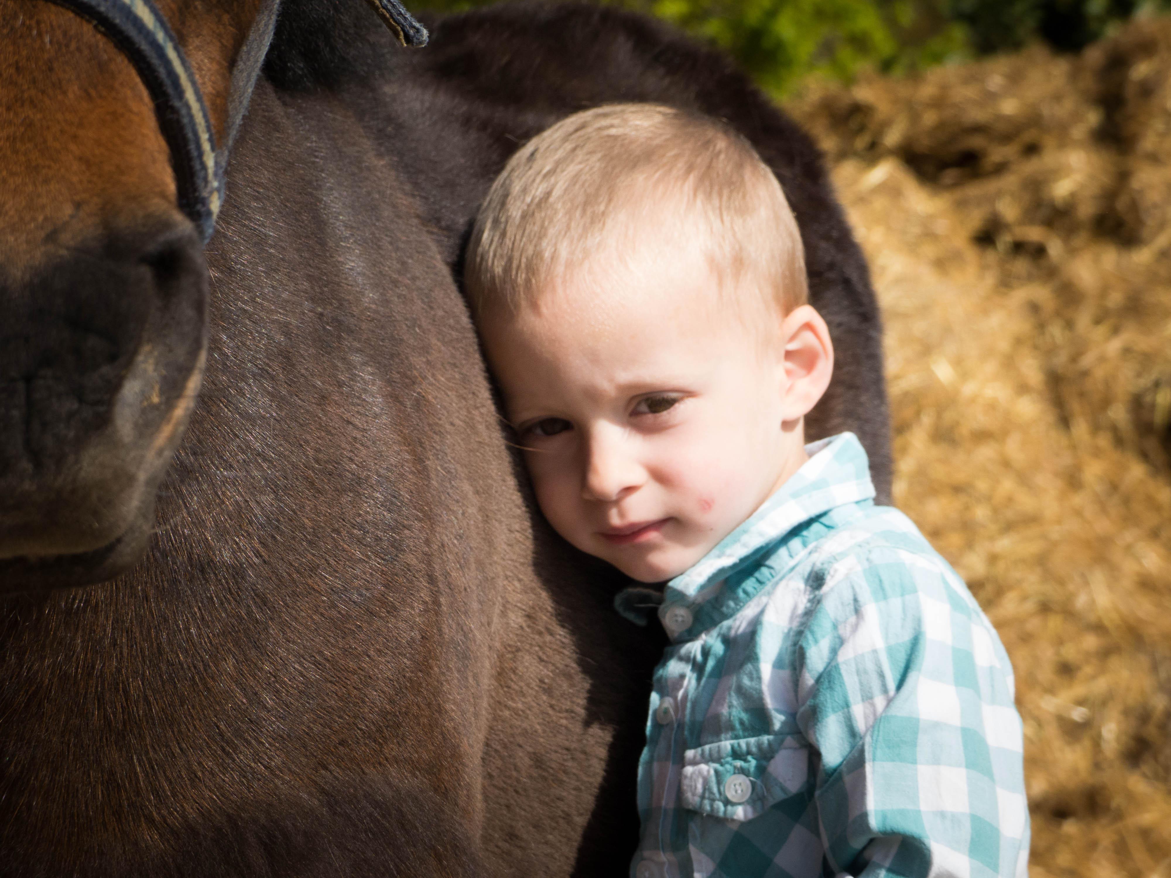 Le baby poney : un éveil moteur et sensoriel dès 3 ans